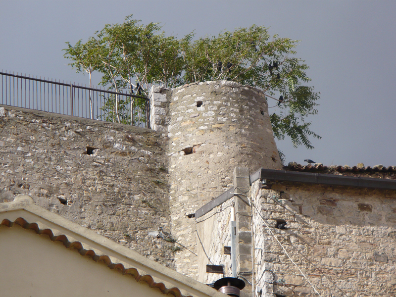 cancellara_castello12