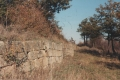 scavi_archeologici_torretta_pietragalla_3